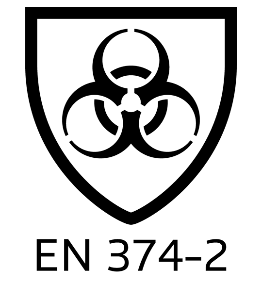 Standard-06